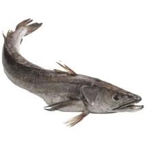 თევზი ხეკი გაყინული 1კგ